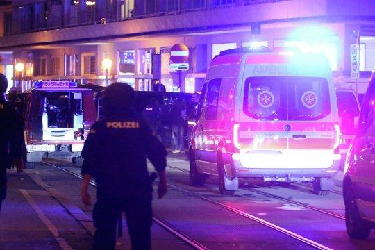 В МВД Австрии заявили об исламистском характере теракта в Вене