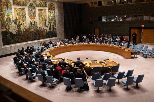 В постпредстве России заявили о сокращении сторонников членства ФРГ в СБ ООН