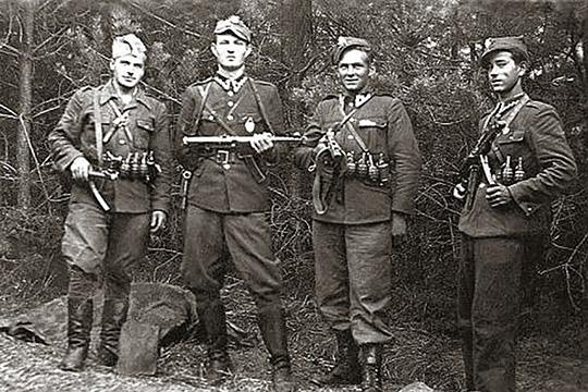 Польша и Литва – еще раз о коллаборационистах и «антикоммунистах»