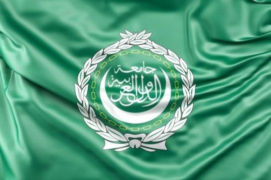 Лига арабских государств и «арабская весна» – две памятные даты с разными оттенками