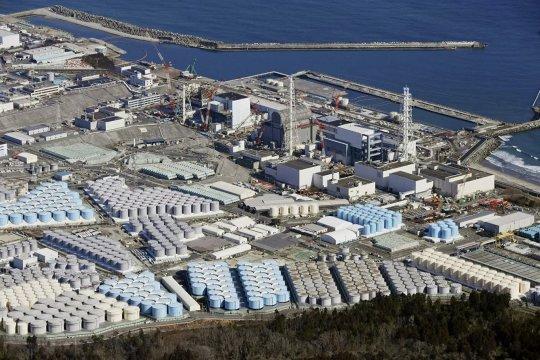 Эхо Фукусимы