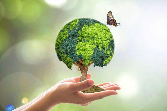«Зеленая трансформация» мировой экономики: новая возможность или фактор глобального неравенства?