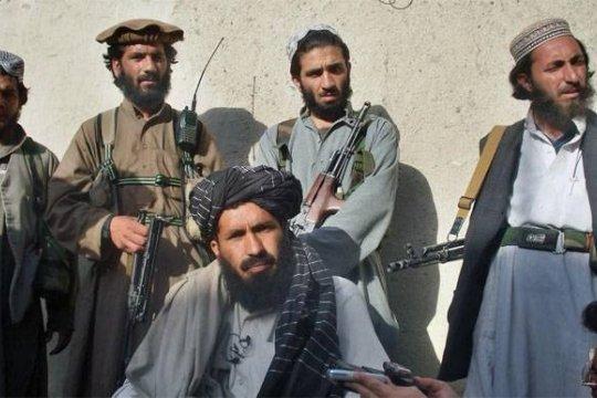 Талибы бойкотируют саммит по Афганистану в Стамбуле