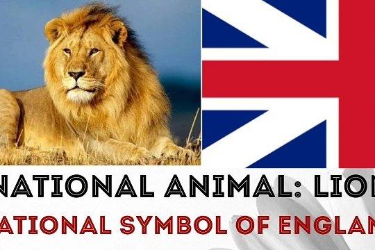 Размышления о том, зачем Британия хочет, «чтобы помнили…». Часть Вторая
