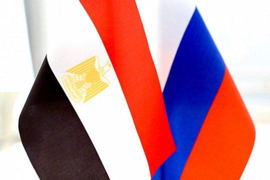 Российско-египетское сотрудничество в Северной Африке:  перспективы и политические риски
