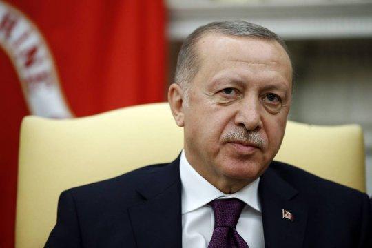 Эрдоган рассказал о борьбе с лесными пожарами в Турции