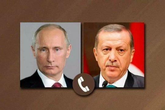 Путин и Эрдоган обсудили ситуацию с лесными пожарами в Турции