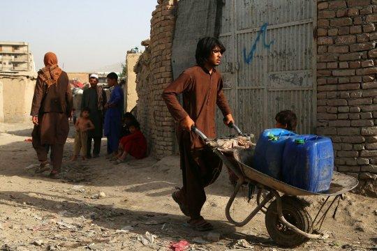 Миссия ООН  зафиксировала в Афганистане рекордное число жертв среди мирного населения