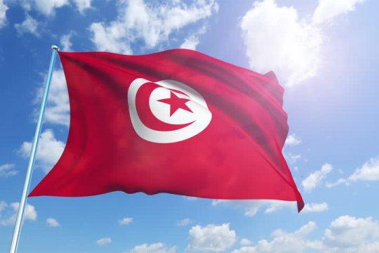 Лидер оппозиции обвинил президента Туниса в перевороте