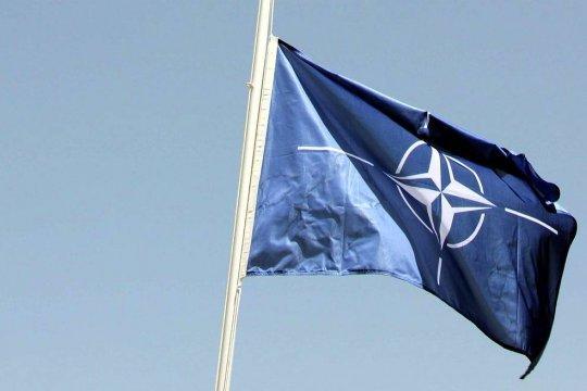 Politico: Генсеком НАТО впервые может стать женщина