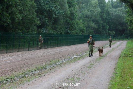 В Погранкомитете Белоруссии прокомментировали информацию о выстрелах на границе с Литвой