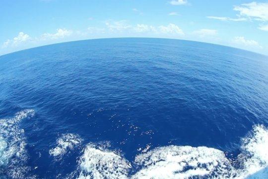 Проблемы Мирового океана и международные организации