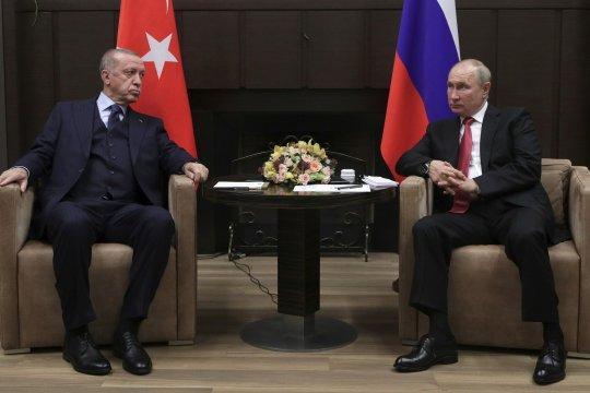 Путин назвал встречу с Эрдоганом содержательной