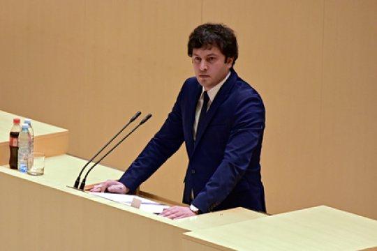 Кобахидзе: Саакашвли готовился совершить государственный переворот