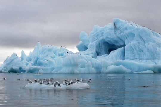 Прирастет ли Евросоюз Арктикой?
