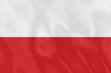 Несет ли Польша ответственность за возрождение неонацизма?