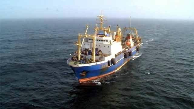 Российские рыболовы с лихвой обеспечивают страну рыбой