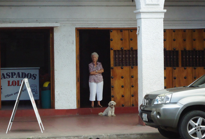 Гранадская дама с собачкой