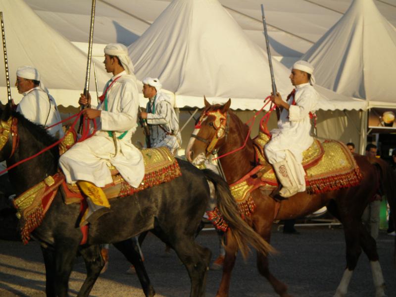 Гарцующие марокканские наездники на SIFEL Agadir